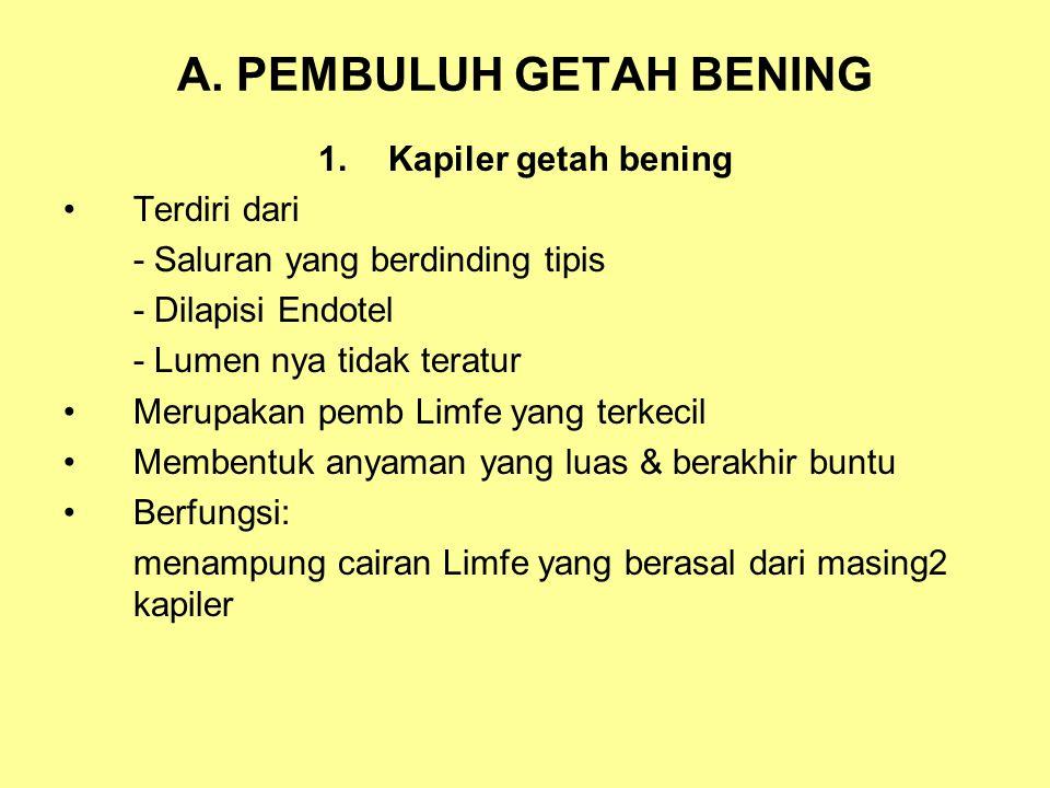 A. PEMBULUH GETAH BENING