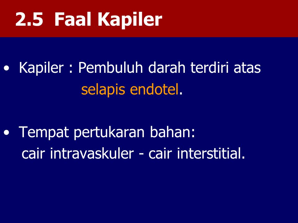 2.5 Faal Kapiler Kapiler : Pembuluh darah terdiri atas