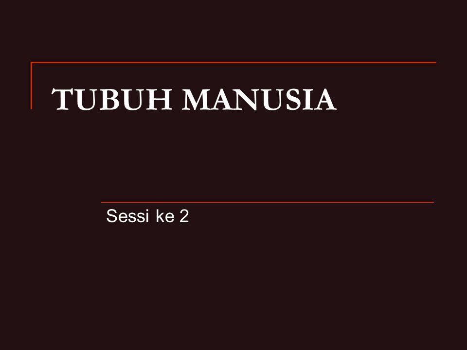TUBUH MANUSIA Sessi ke 2