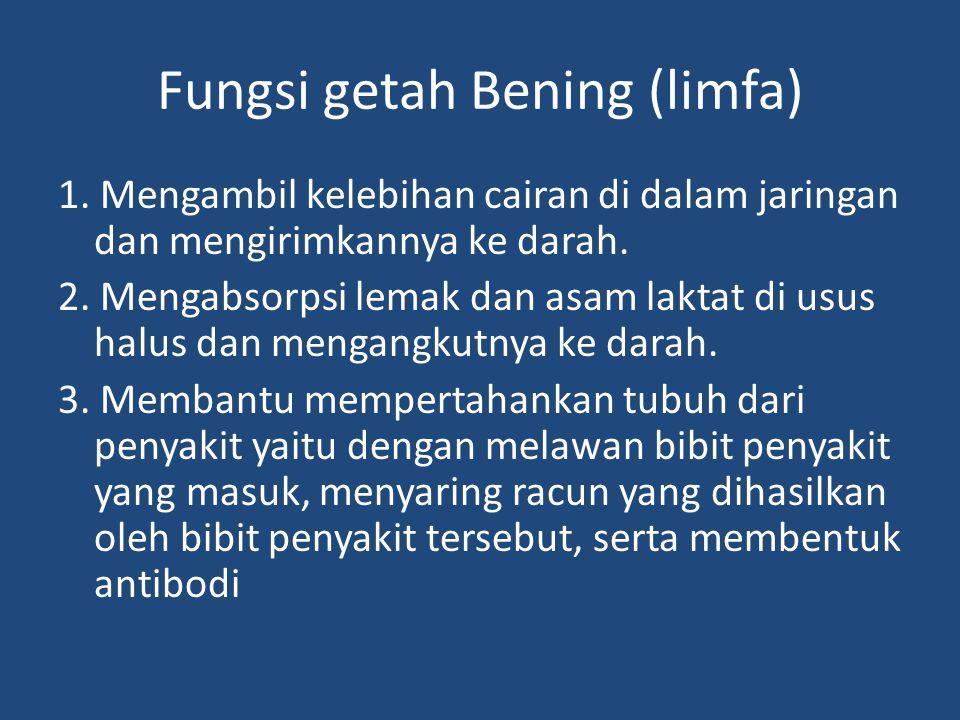 Fungsi getah Bening (limfa)