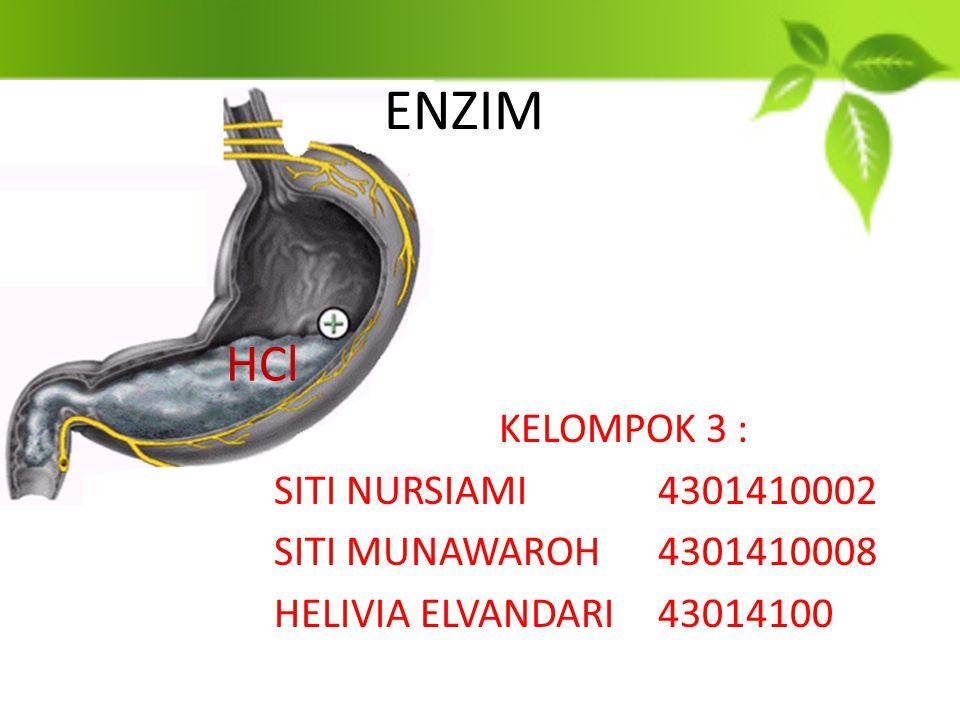 ENZIM HCl KELOMPOK 3 : SITI NURSIAMI 4301410002