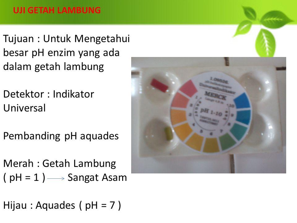 Tujuan : Untuk Mengetahui besar pH enzim yang ada dalam getah lambung