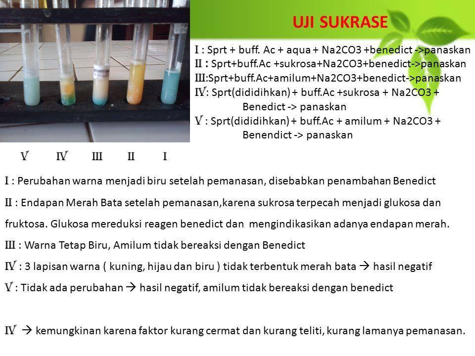 UJI SUKRASE I : Sprt + buff. Ac + aqua + Na2CO3 +benedict ->panaskan. II : Sprt+buff.Ac +sukrosa+Na2CO3+benedict->panaskan.