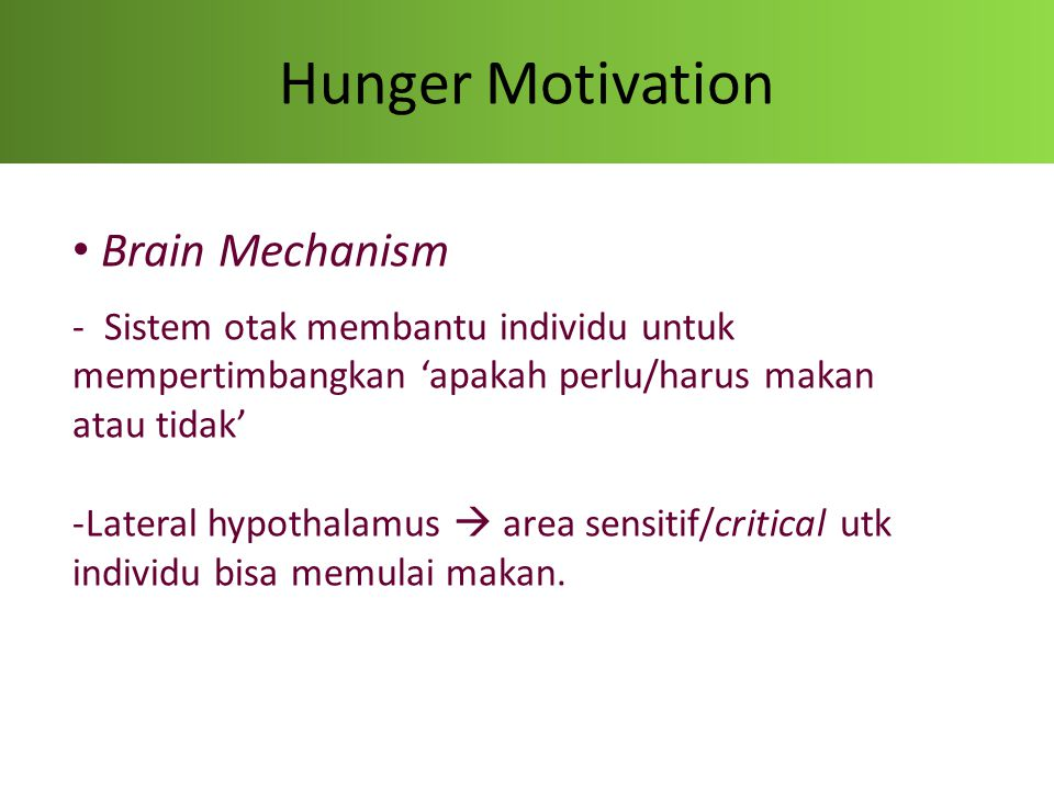 Hunger Motivation Brain Mechanism