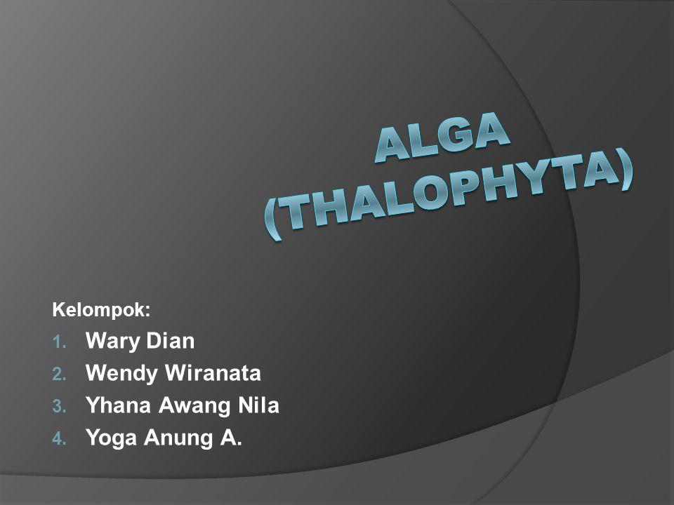 Kelompok: Wary Dian Wendy Wiranata Yhana Awang Nila Yoga Anung A.