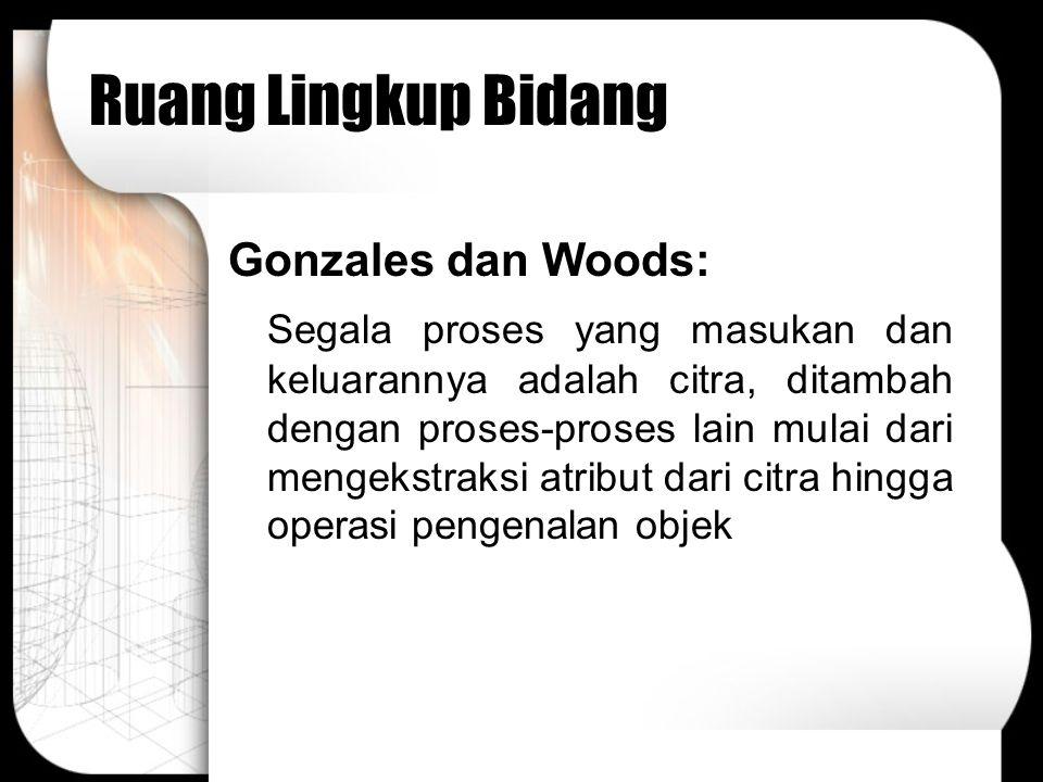 Ruang Lingkup Bidang Gonzales dan Woods: