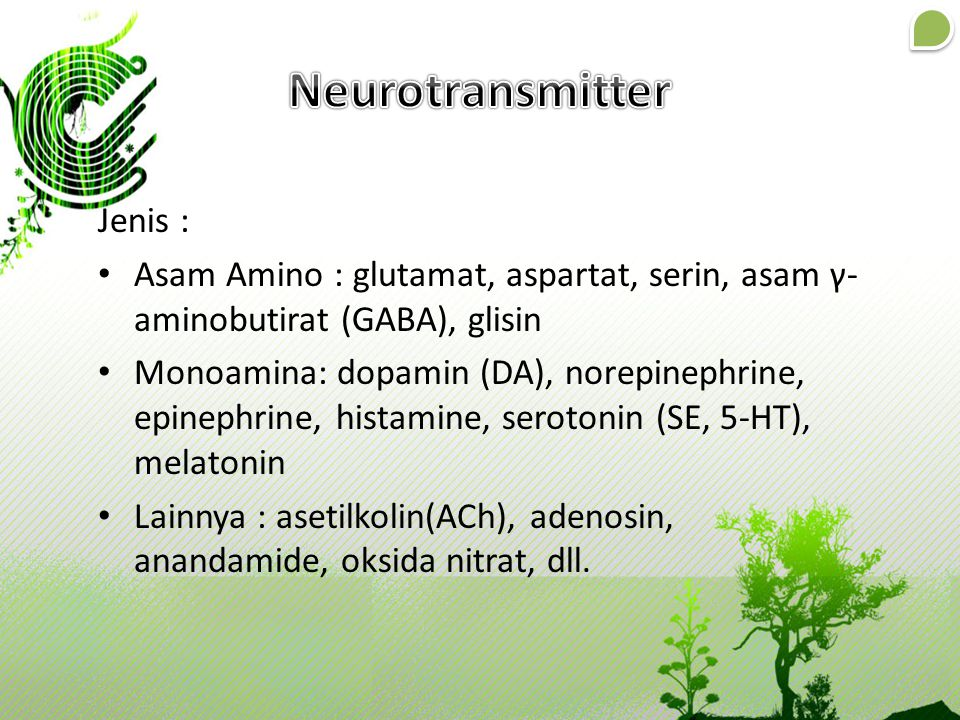 Neurotransmitter Jenis :