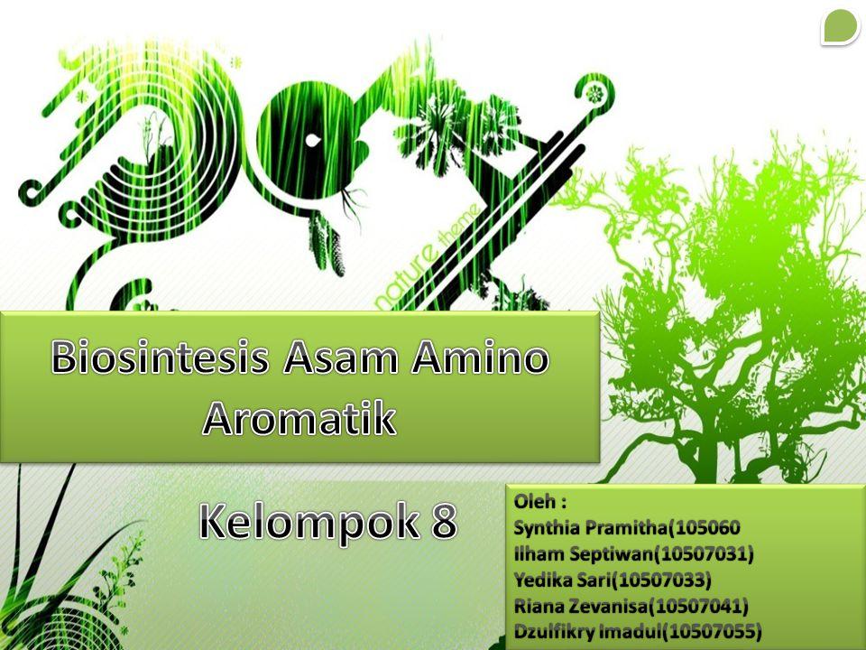 Biosintesis Asam Amino Aromatik