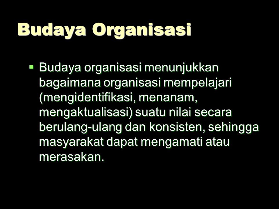 Budaya Organisasi