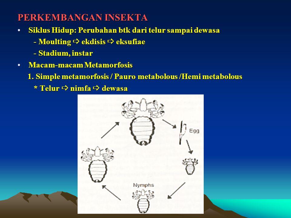 PERKEMBANGAN INSEKTA Siklus Hidup: Perubahan btk dari telur sampai dewasa. - Moulting  ekdisis  eksufiae.