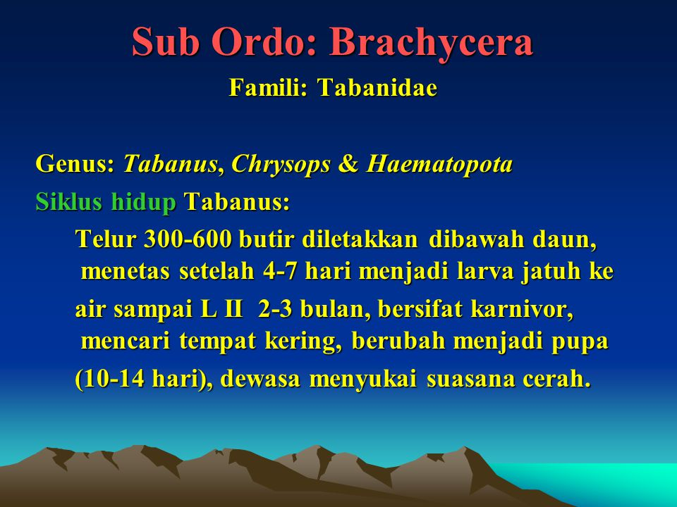 Sub Ordo: Brachycera Famili: Tabanidae