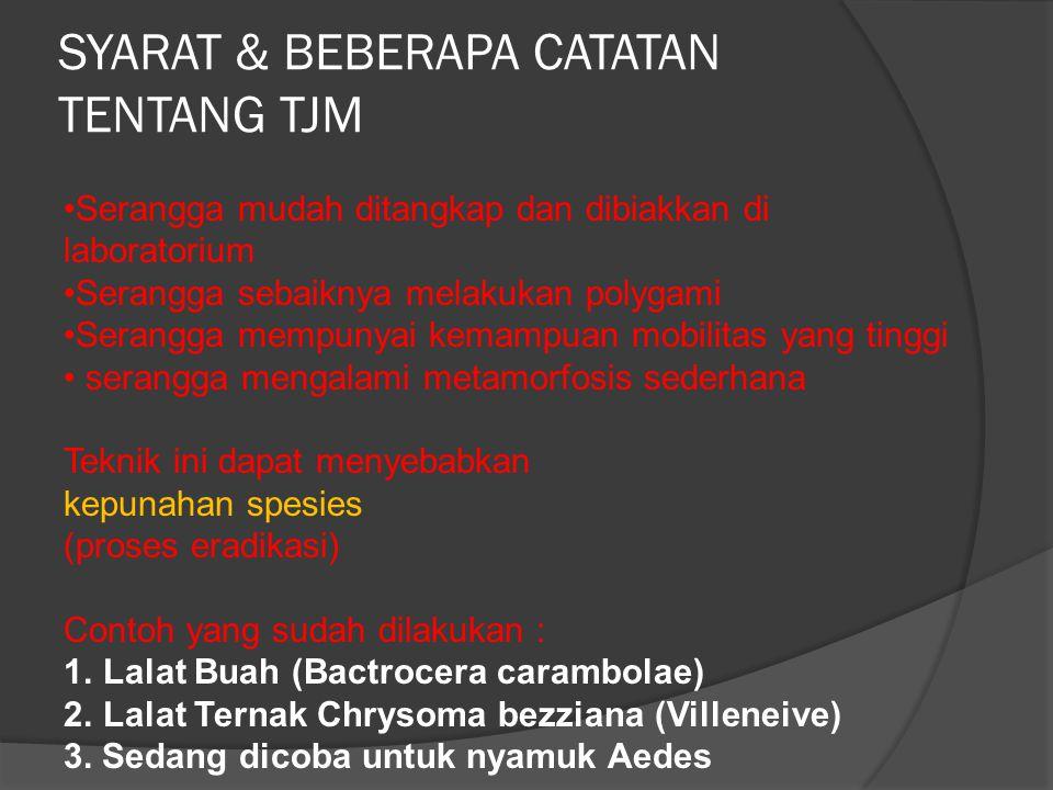 SYARAT & BEBERAPA CATATAN TENTANG TJM