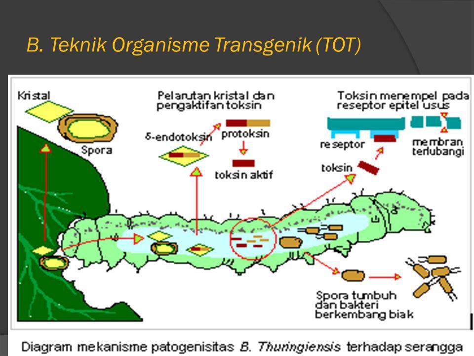 B. Teknik Organisme Transgenik (TOT)