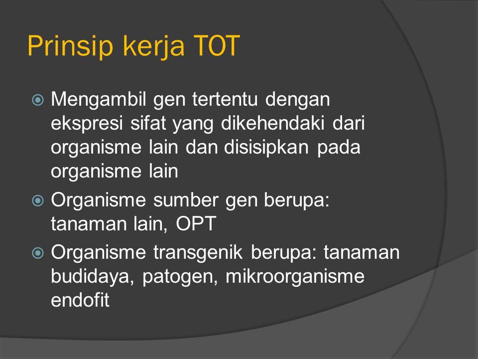 Prinsip kerja TOT Mengambil gen tertentu dengan ekspresi sifat yang dikehendaki dari organisme lain dan disisipkan pada organisme lain.