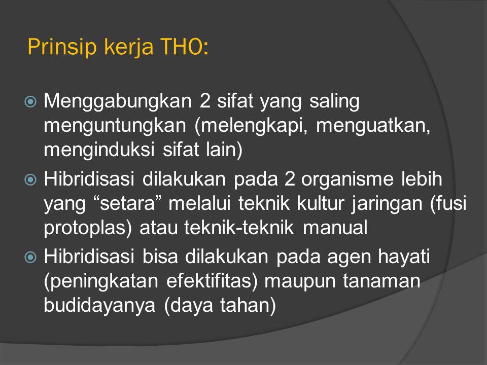 Prinsip kerja THO: Menggabungkan 2 sifat yang saling menguntungkan (melengkapi, menguatkan, menginduksi sifat lain)