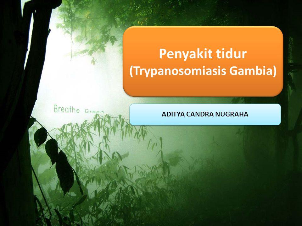 Penyakit tidur (Trypanosomiasis Gambia)