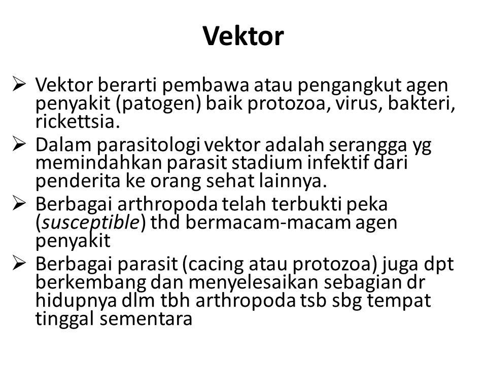 Vektor Vektor berarti pembawa atau pengangkut agen penyakit (patogen) baik protozoa, virus, bakteri, rickettsia.