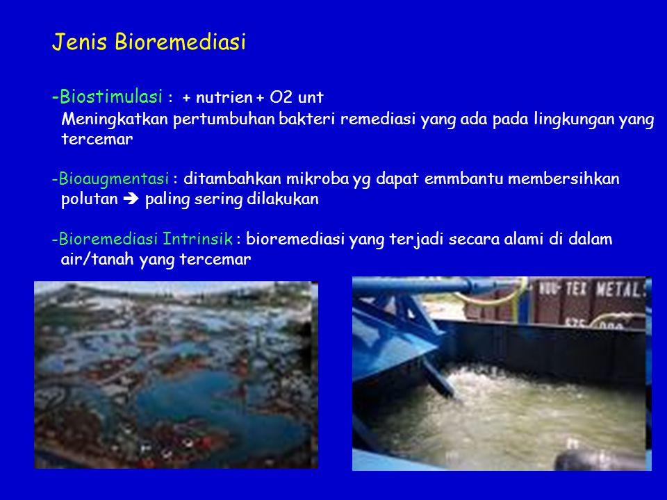 Jenis Bioremediasi Biostimulasi : + nutrien + O2 unt