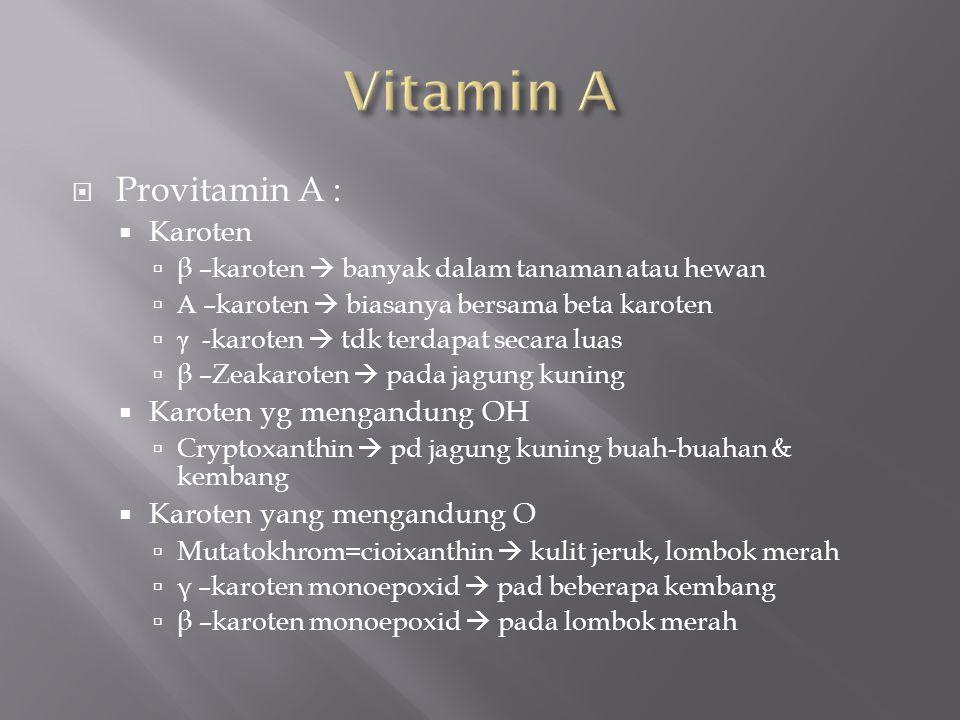 Vitamin A Provitamin A : Karoten Karoten yg mengandung OH