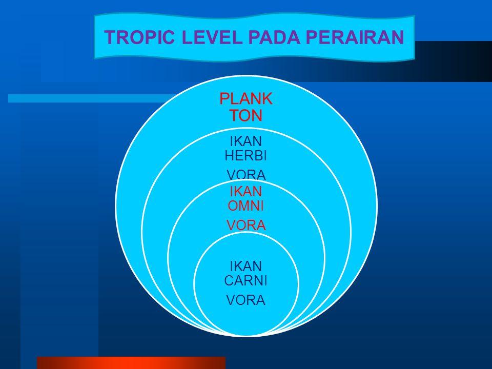 TROPIC LEVEL PADA PERAIRAN