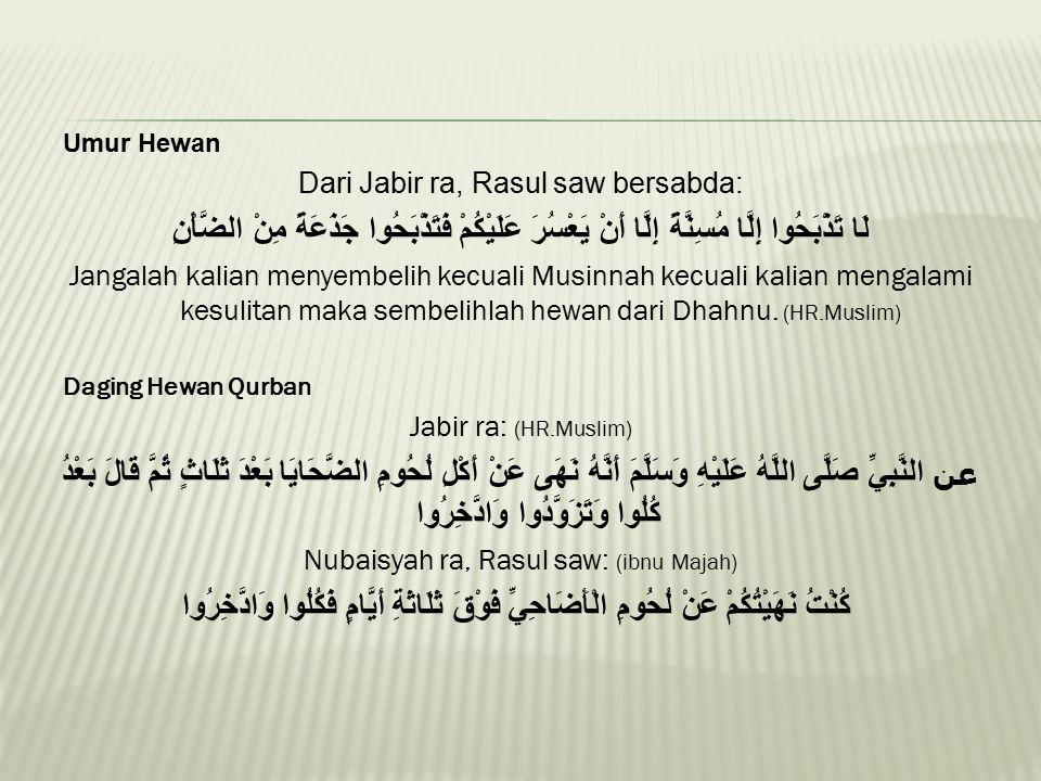 Umur Hewan Dari Jabir ra, Rasul saw bersabda: لَا تَذْبَحُوا إِلَّا مُسِنَّةً إِلَّا أَنْ يَعْسُرَ عَلَيْكُمْ فَتَذْبَحُوا جَذَعَةً مِنْ الضَّأْنِ