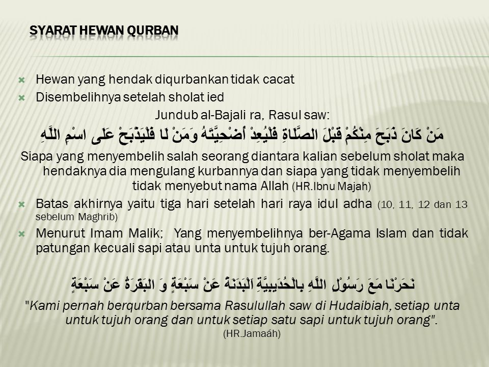 Jundub al-Bajali ra, Rasul saw:
