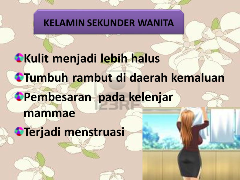 KELAMIN SEKUNDER WANITA