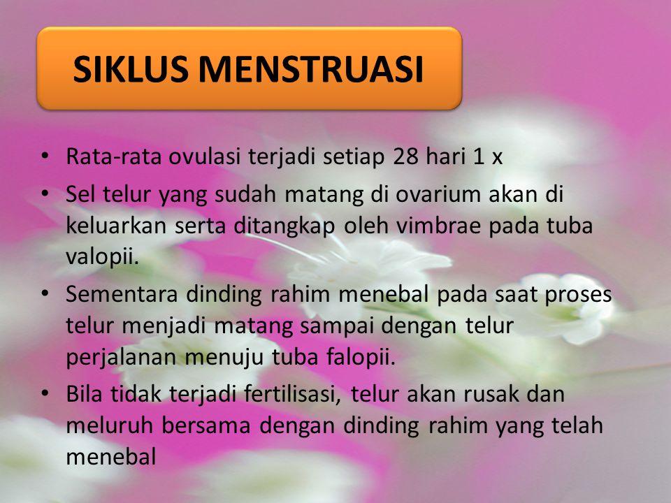 SIKLUS MENSTRUASI Rata-rata ovulasi terjadi setiap 28 hari 1 x