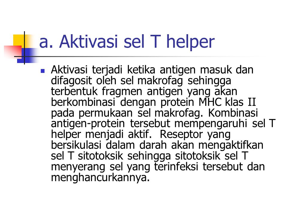a. Aktivasi sel T helper