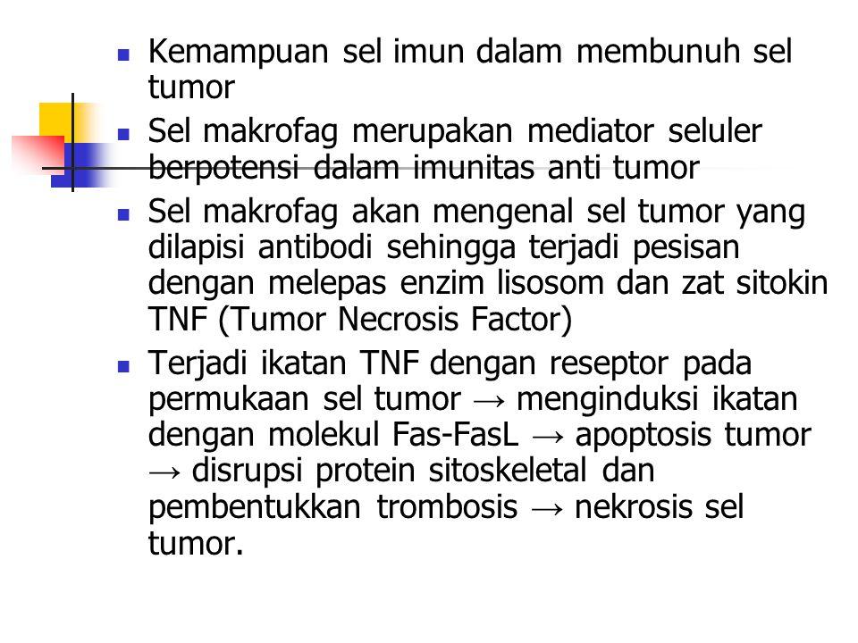 Kemampuan sel imun dalam membunuh sel tumor