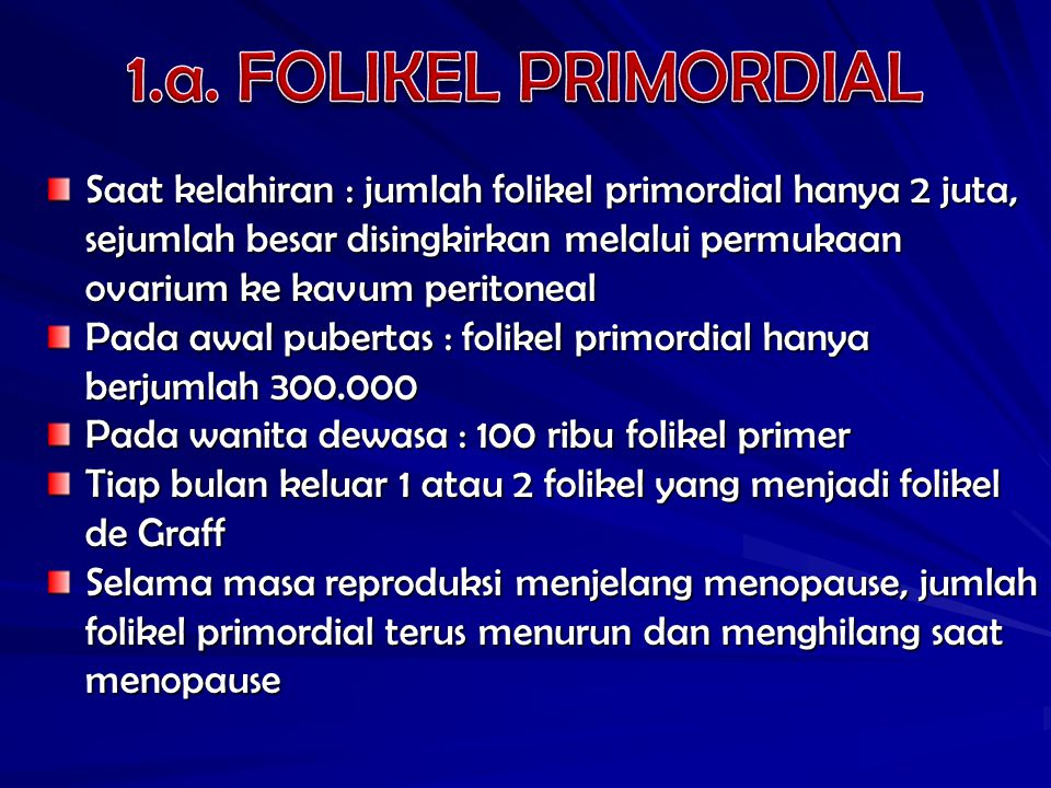 1.a. FOLIKEL PRIMORDIAL