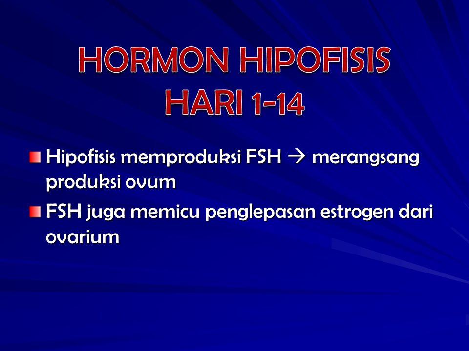HORMON HIPOFISIS HARI 1-14