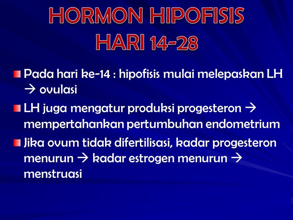 HORMON HIPOFISIS HARI 14-28