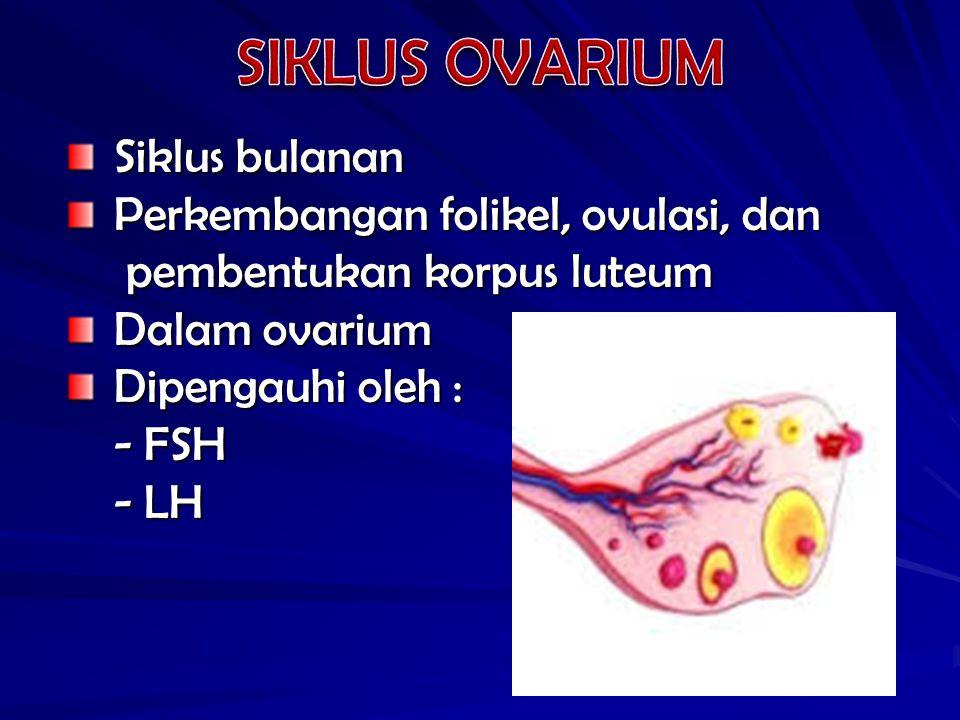 SIKLUS OVARIUM Siklus bulanan Perkembangan folikel, ovulasi, dan
