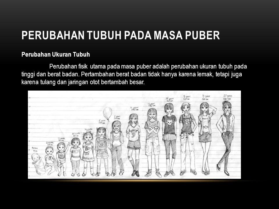 Perubahan Tubuh pada masa Puber
