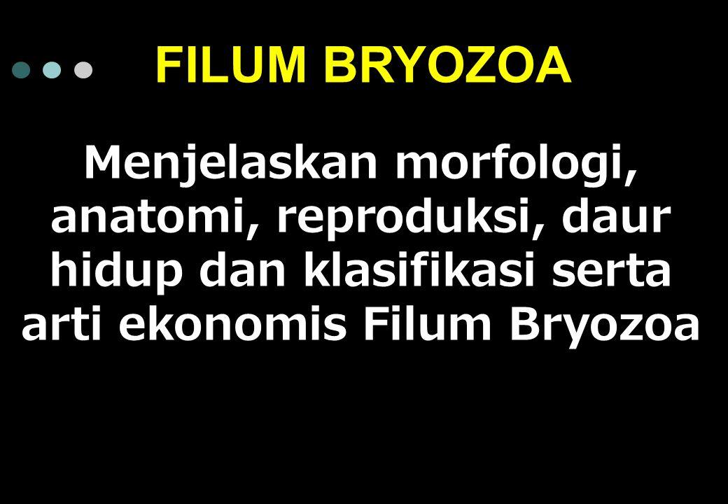 FILUM BRYOZOA Menjelaskan morfologi, anatomi, reproduksi, daur hidup dan klasifikasi serta arti ekonomis Filum Bryozoa.