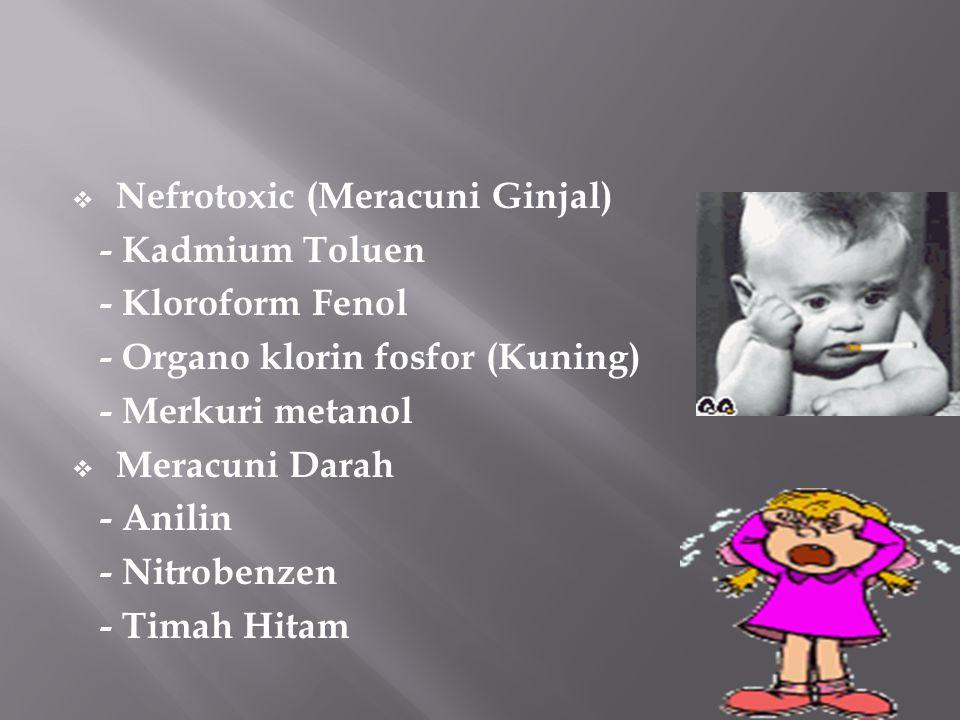 Nefrotoxic (Meracuni Ginjal)
