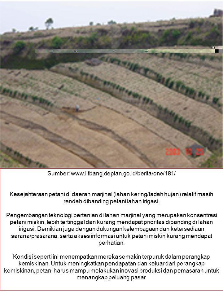 Sumber: www.litbang.deptan.go.id/berita/one/181/