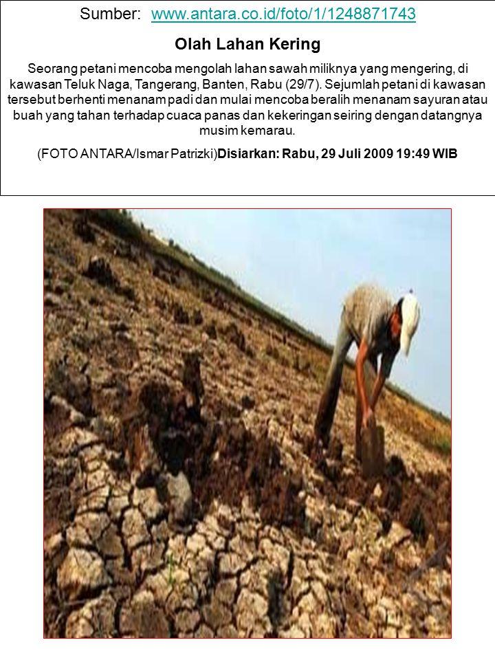 Sumber: www.antara.co.id/foto/1/1248871743 Olah Lahan Kering