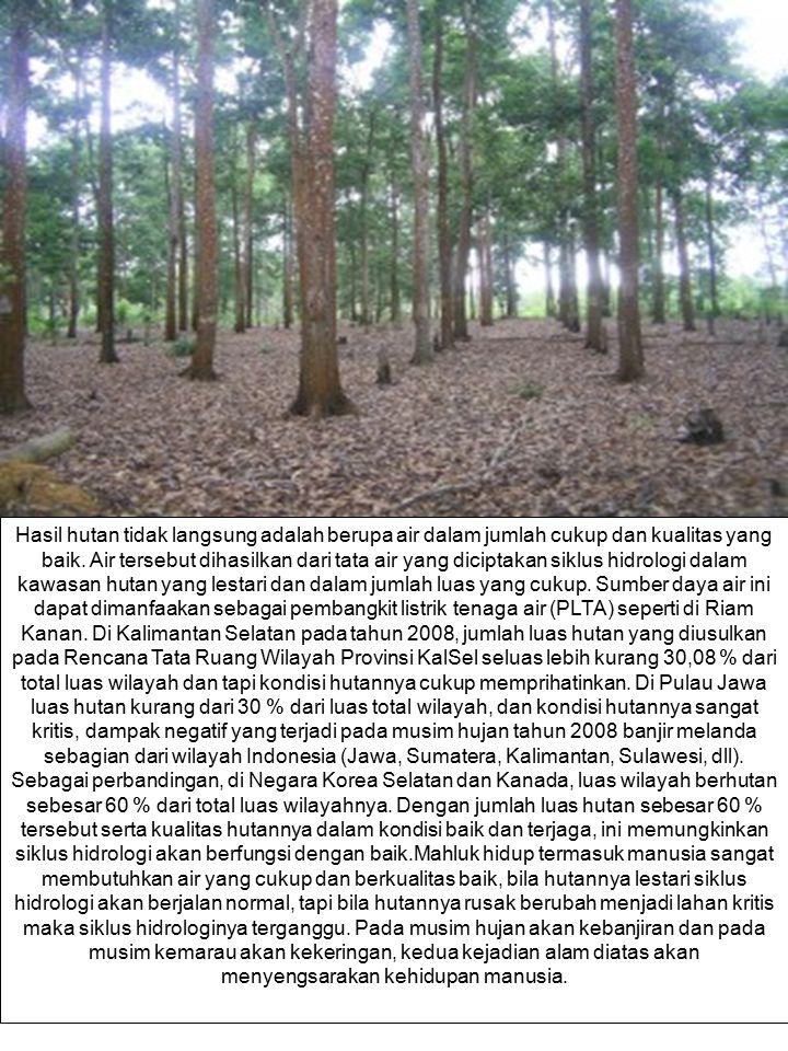 Hasil hutan tidak langsung adalah berupa air dalam jumlah cukup dan kualitas yang baik.