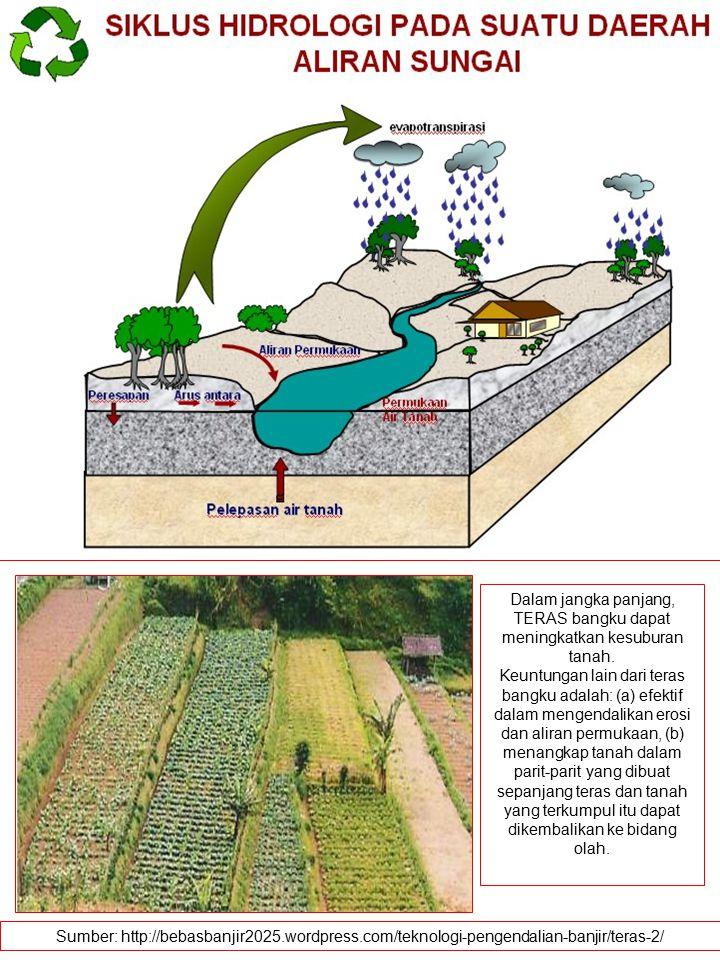 Dalam jangka panjang, TERAS bangku dapat meningkatkan kesuburan tanah.