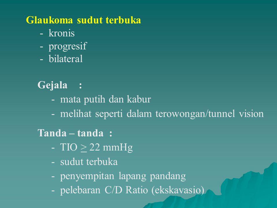 Glaukoma sudut terbuka - kronis - progresif - bilateral
