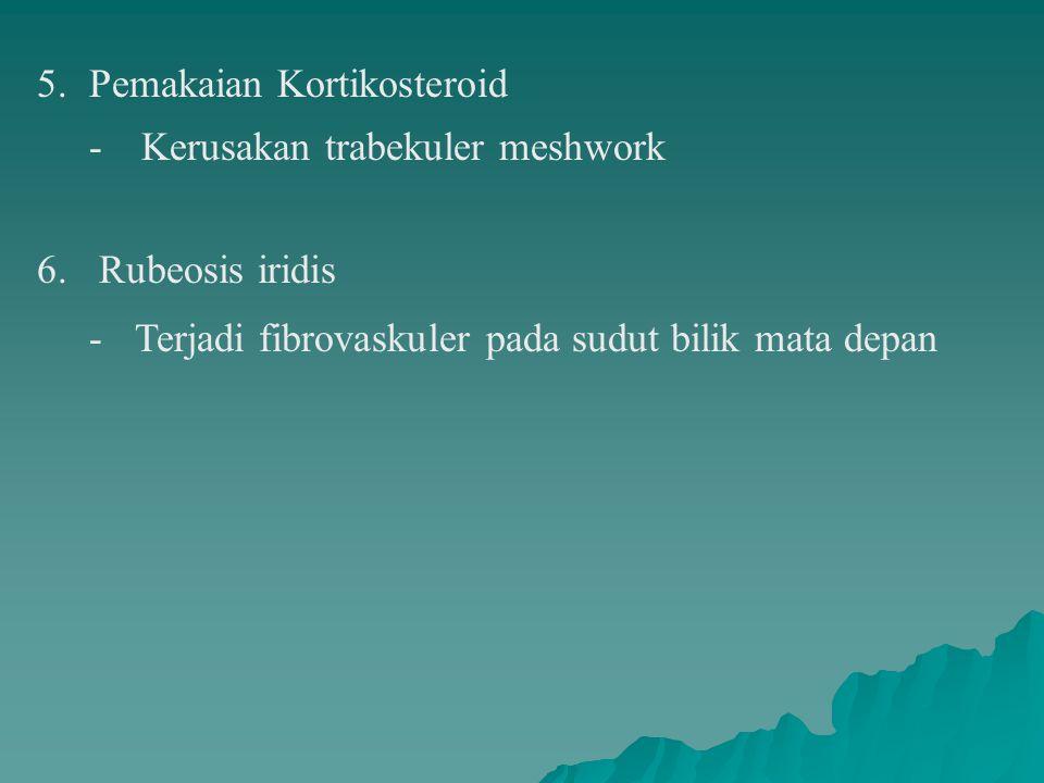 5. Pemakaian Kortikosteroid - Kerusakan trabekuler meshwork