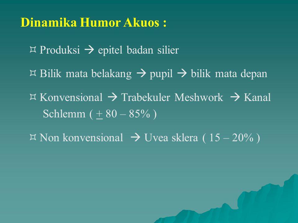 Dinamika Humor Akuos : Produksi  epitel badan silier