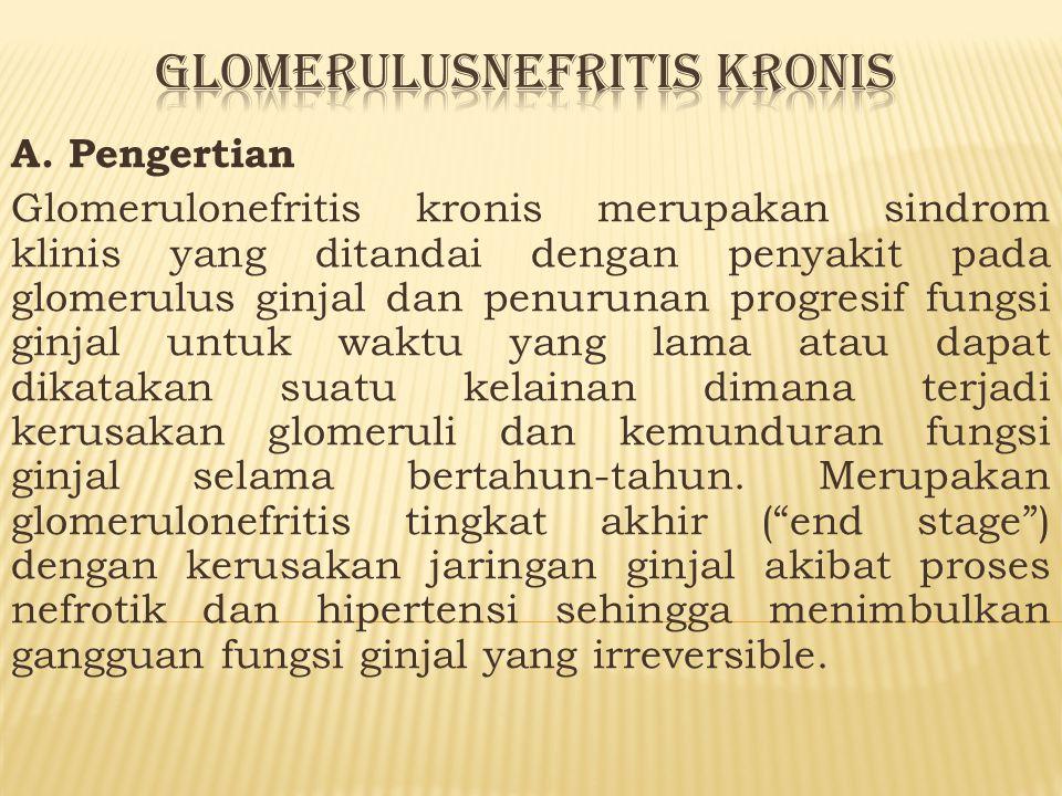 Glomerulusnefritis kronis