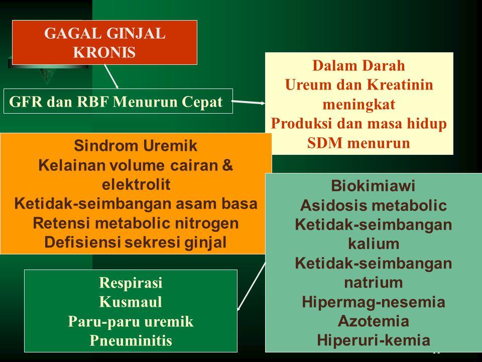 Ureum dan Kreatinin meningkat Produksi dan masa hidup SDM menurun