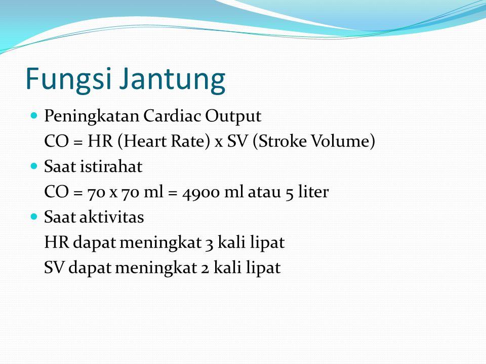 Fungsi Jantung Peningkatan Cardiac Output