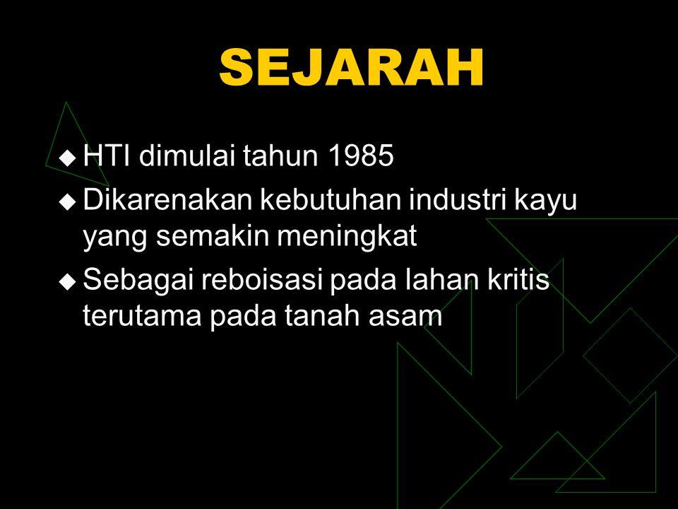 SEJARAH HTI dimulai tahun 1985