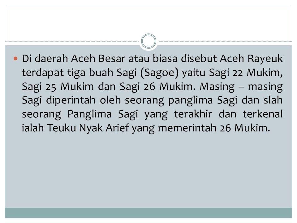 Di daerah Aceh Besar atau biasa disebut Aceh Rayeuk terdapat tiga buah Sagi (Sagoe) yaitu Sagi 22 Mukim, Sagi 25 Mukim dan Sagi 26 Mukim.