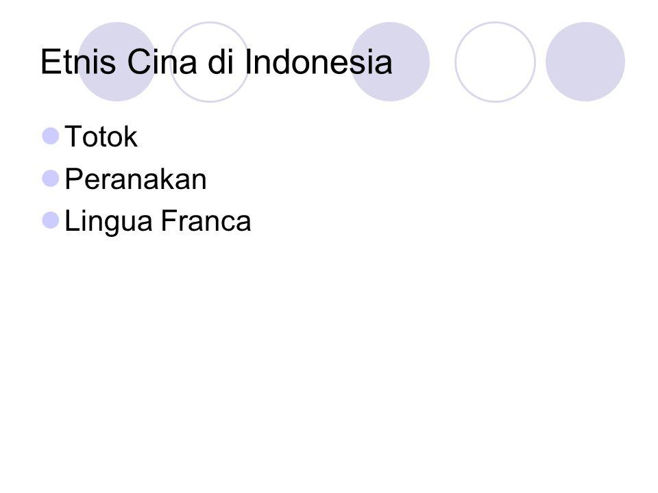 Etnis Cina di Indonesia
